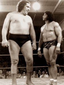 andre-the-giant-s